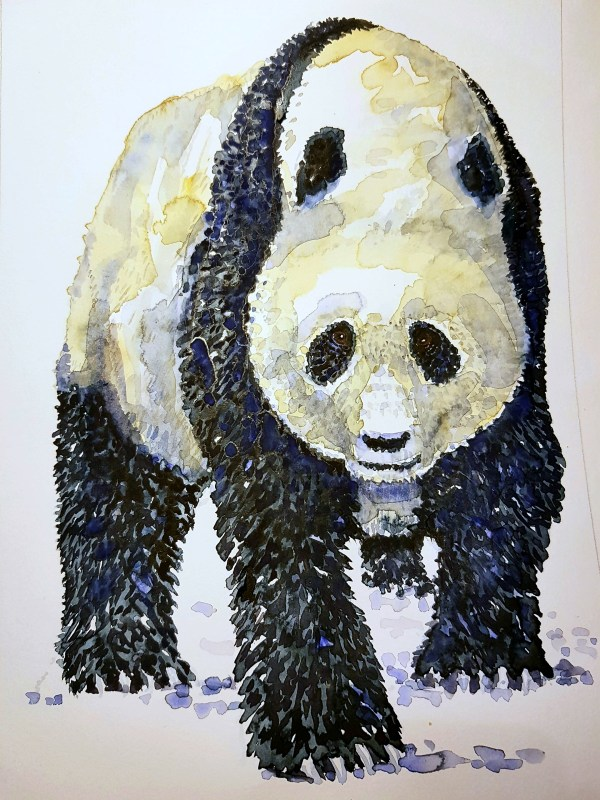 Panda watercolor by Frits Ahlefeldt