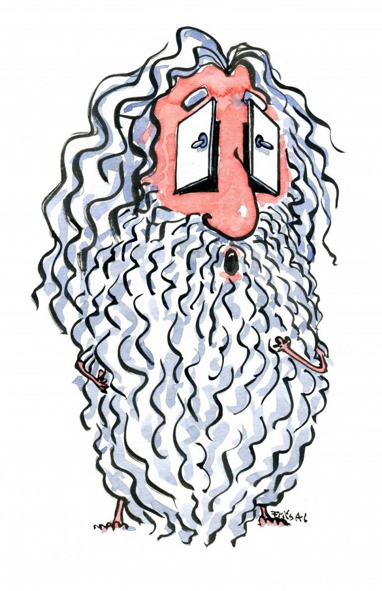 Drawing of a bearded man with two doors as eyes