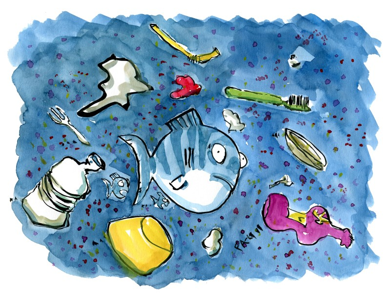 Fish in a sea of plastic waste
