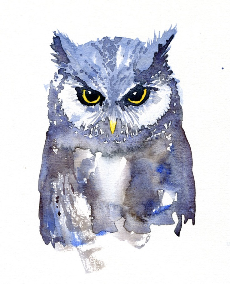 Watercolor of an owl