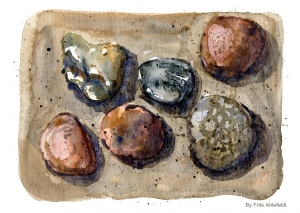 Watercolor of stones on a beach