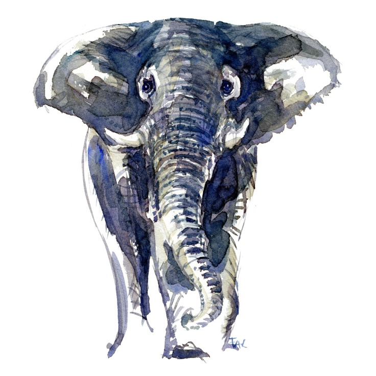 watercolor-animal-elephant-front-blue-by-frits-ahlefeldt