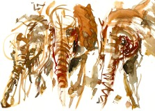 Elephant group Watercolor by Frits Ahlefeldt