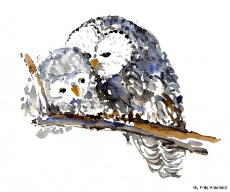 Owl mother illustration by FritsAhlefeldt.com