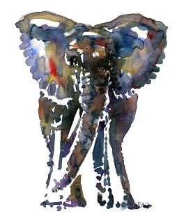 Colorful elephant - front view - watercolor by Frits Ahlefeldt