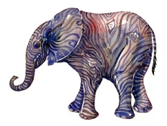 watercolor-animal-elephant-front-sideview-young-by-frits-ahlefeldt