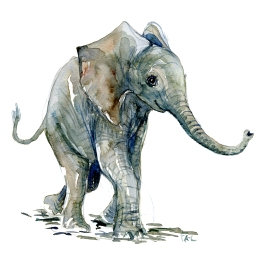 Elephant baby watercolor by Frits Ahlefeldt