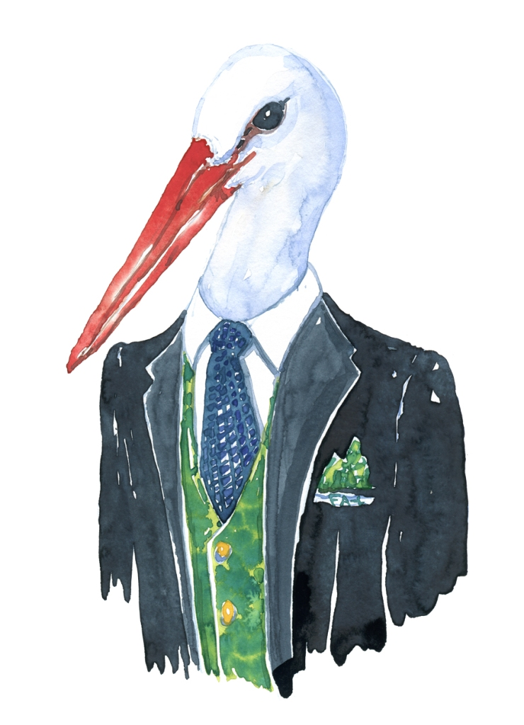 White Stork in suit