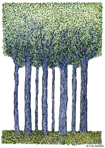 Drawing of a group of tall trees