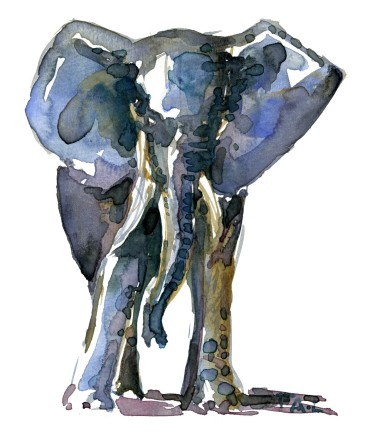 Blue-ish elephant - front view - watercolor by Frits Ahlefeldt