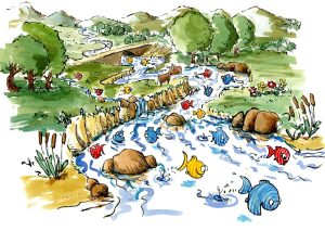 Drawing of fishes swimming happily in a river