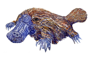 Watercolour by Frits Ahlefeldt, of a Platypus with stribes