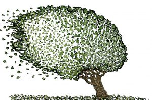 Drawing of a tree in the wind