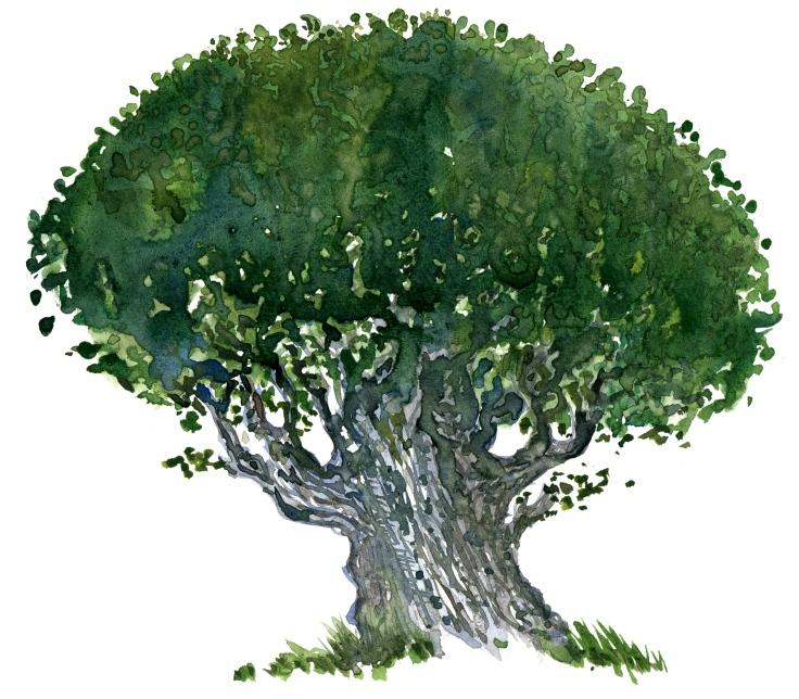 Tree in watecolor