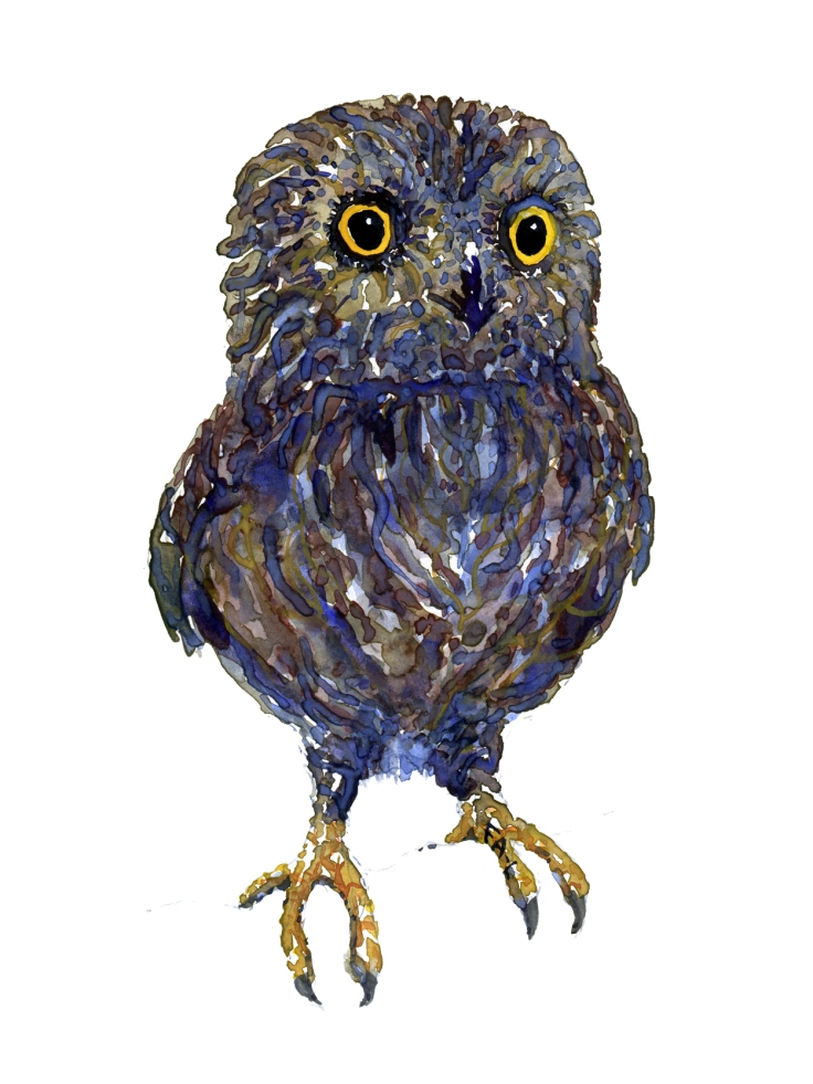 Illustration of an owl - front view Painting by Frits Ahlefeldt