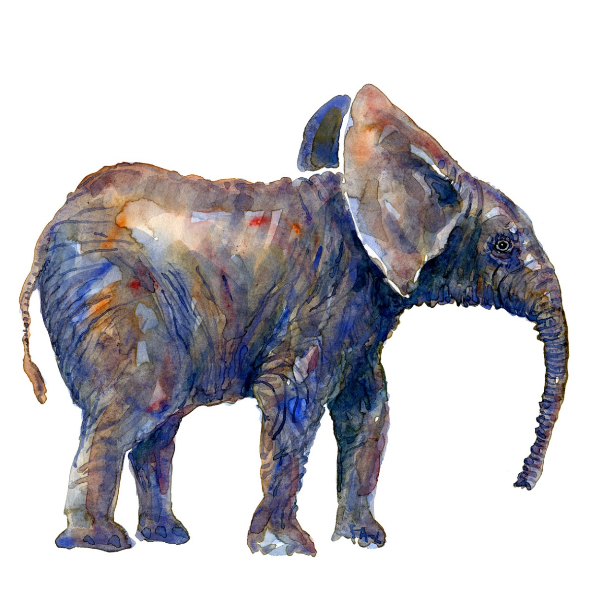 Watercolor of elephant art by Frits Ahlefeldt
