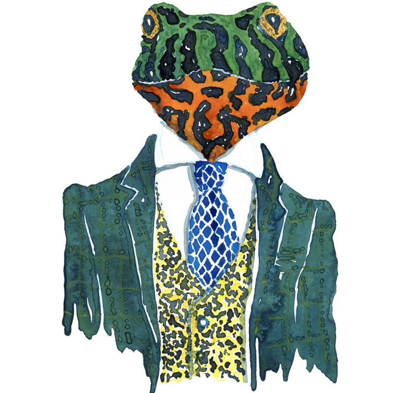 Firebellied frog in a green suit Fashion watercolor painting of animal in suit by Frits Ahlefeldt
