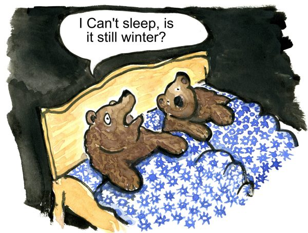 Bear in bed waiting for spring cant sleep