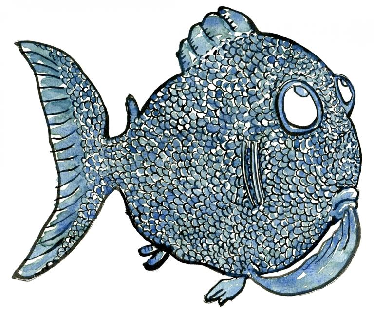 Drawing of a fish thinking