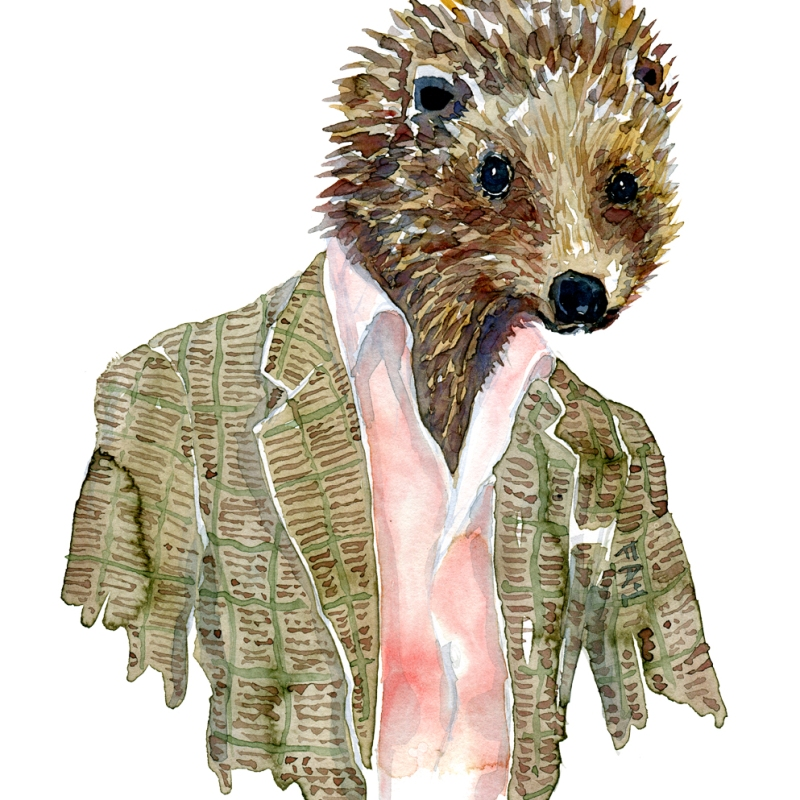 Watercolor of a hedgehog in a suit