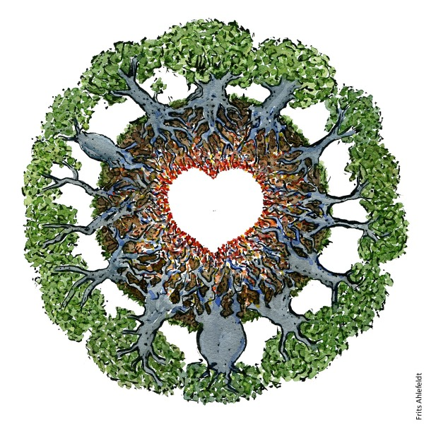 Drawing of a circle of trees with the roots going together and forming a heart. Illustration by Frits Ahlefeldt