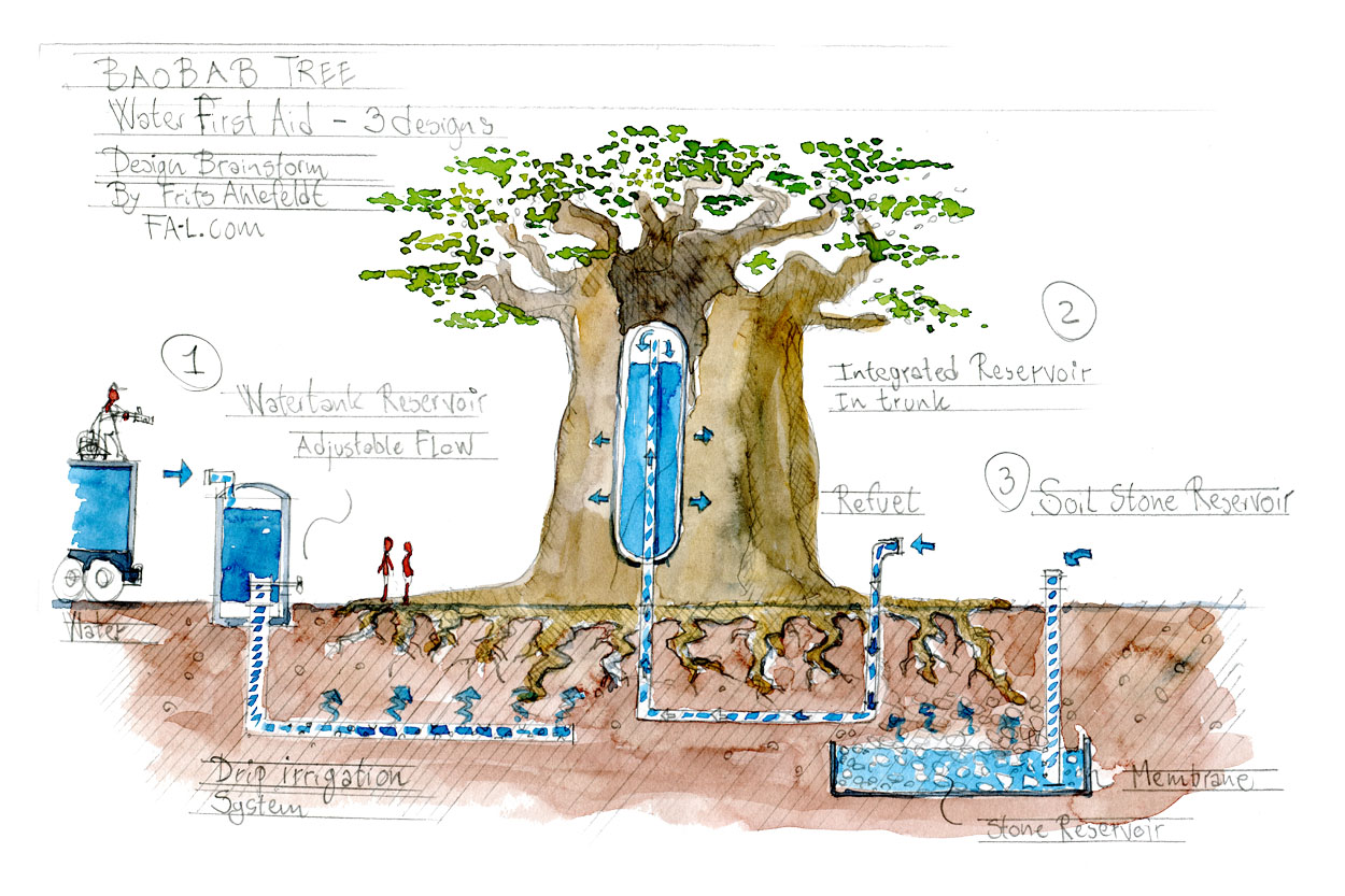 sketch, drawing of large baobab tree and ways to make a water reservoir close to it. idea sketches and brainstorm by Frits Ahlefeldt