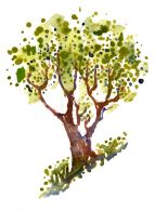 tree-on-hill-watercolor