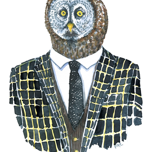 Owl dressed in a suit
