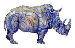 Rhino watercolour by Frits Ahlefeldt