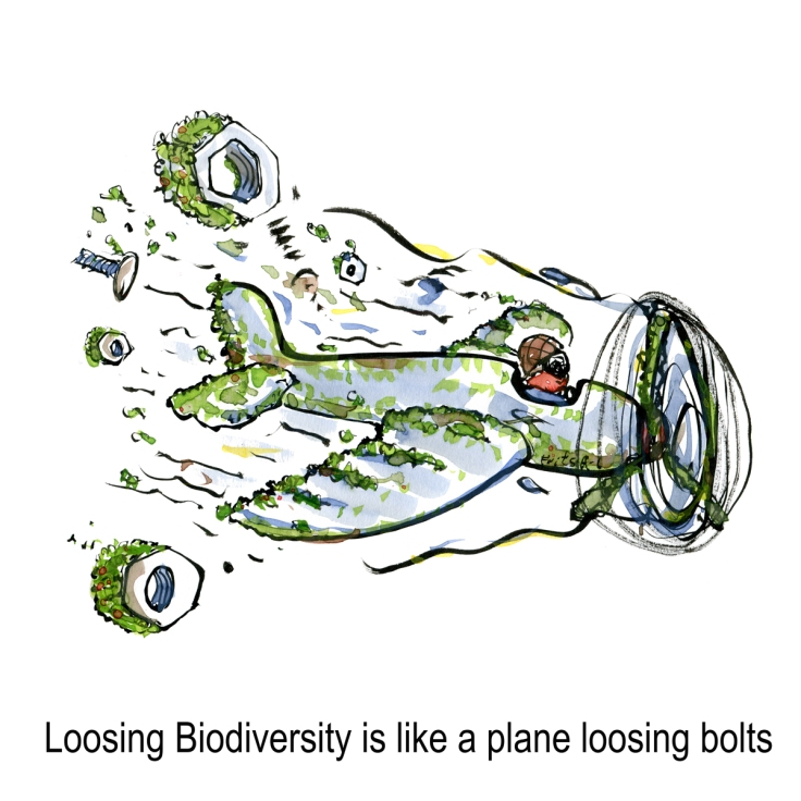 Drawing of a green eco plane loosing bolts