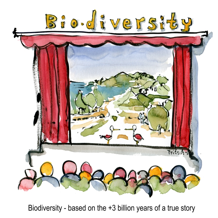 Drawing of a biodiversity theater