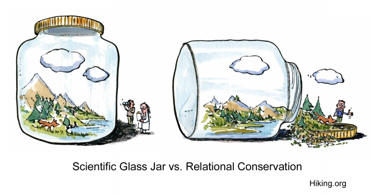 Drawing of nature in a closed and open jar