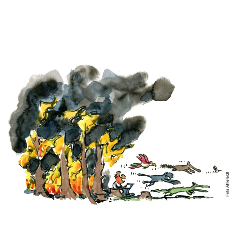 Drawing of a man sitting at the edge of a burning forest with a laptop, while the animals flee all around him. Looking up. Environment Illustration by Frits Ahlefeldt
