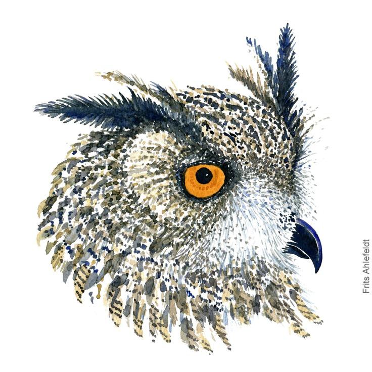 Stor hornugle - Eurasian eagleowl - Bird watercolor painting. Artwork by Frits Ahlefeldt. Fugle akvarel